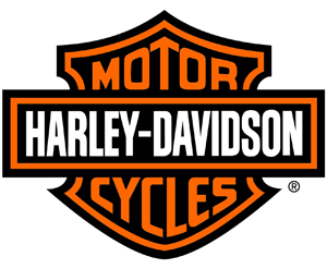 HARLEY-DAVIDSON REPLICA KNUCKLEHEAD CHOPPER | Link Motors Franchising